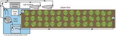 This is a simple diagram of a Portable Farms Aquaponics System