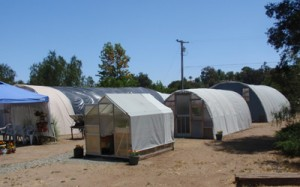 Portable Farms Aquaponics Research Center - Escondido, California, 2008