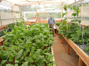 40 days after the fish and plants have been installed in a Portable Farms® Aquaponics System.
