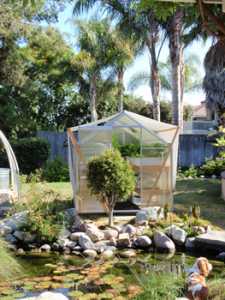 This small Portable Farms Aquaponics System attracted WORLDWIDE attention in 24 hours.