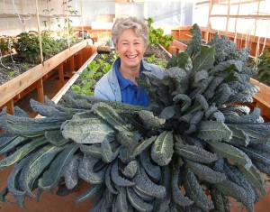 "Phyllis Davis, Co-Inventor of Portable Farms Aquaponics Systems holding 8 heads of kale just harvested from a Portable Farm. The average height of these kale is 47"". Monster kale!"