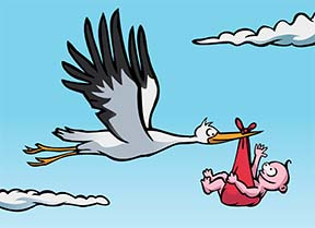 stork with baby 2