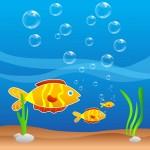 Portable Farms Aquaponics Systems