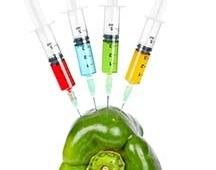 green pepper syringes 2