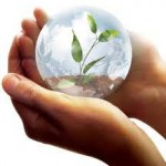 globalwarming aquaponics
