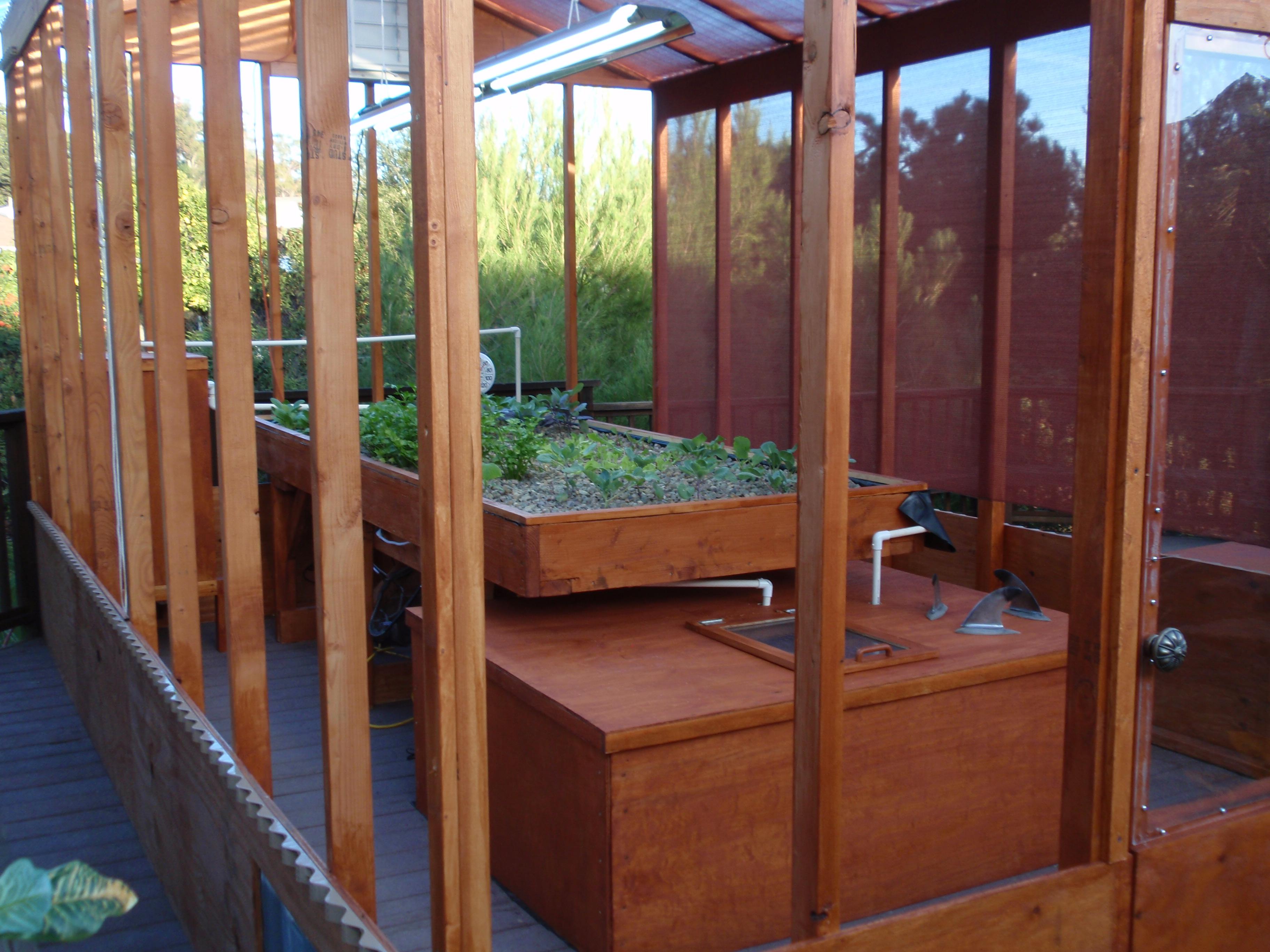 Indoor aquaponics kit for sale easy aquaponics for Aquaponics fish tank for sale