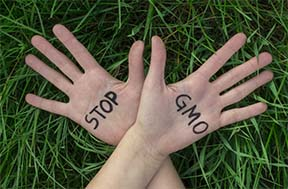 stop gmo hands 2
