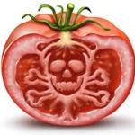 tomato poison sign 2