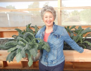 Phyllis Davis, President, Portable Farms LLC harvesting kale for lunch. This is 'young' kale growing only 35 days in a Portable Farms Aquaponics System.