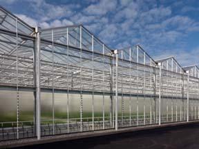 greenhouselong aquaponics