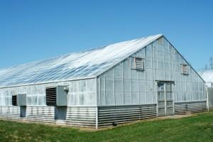 greenhousepaintedpanels aquaponics