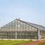 greenhouse1a aquaponics