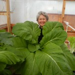 Phyllis Davis holding ONE HEAD of India Mustard grown in 45 in Portable Farms® Aquaponics System.
