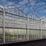 greenhouse large