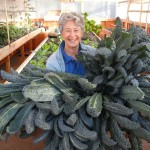"Phyllis Davis, Co-Inventor of Portable Farms® Aquaponics Systems holding 8 heads of kale just harvested from a Portable Farm. The average height of these kale is 47"". Monster kale!"