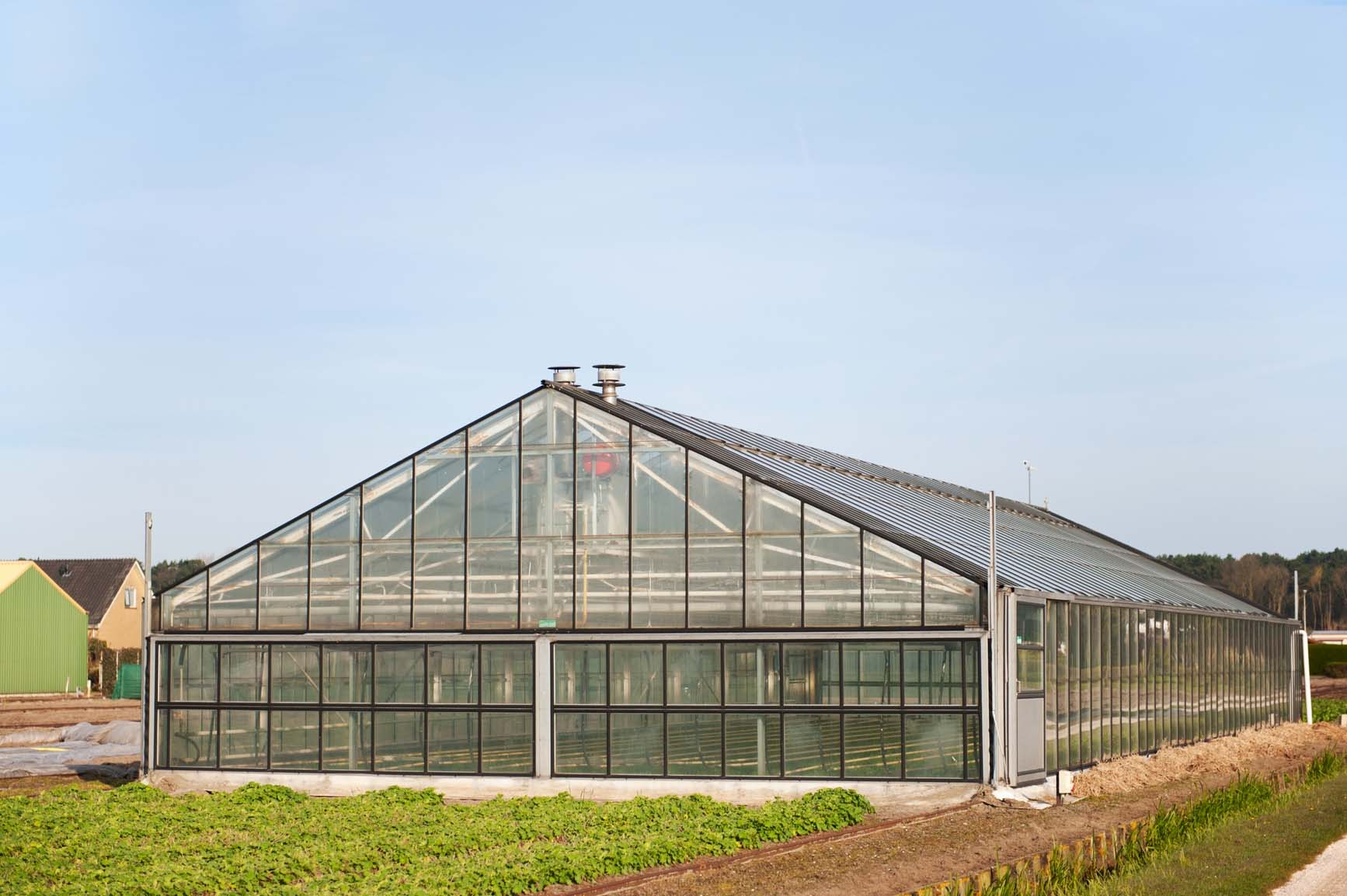 A millionaire on one acre with aquaponics for 10000 square feet to acres