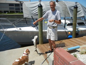 Colle Davis catching a baby shark in the canal off the back of the house (near the Portable Farm). Dolly (Colle's Service Animal - 6.5 years old) loves to bark at the many fish he catches.  Please note our recently rehabbed 30' sailboat behind him. The boat is an antique boat we rehabbed from stem-to-stern (we'll never do that again) and converted to an electric sailboat (from diesel). She sleeps six and has a full galley, head and hot shower.