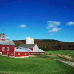 clipart-farm2