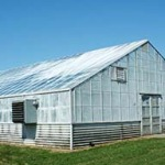 greenhousepaintedpanels2