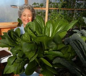 Phyllis Davis harvesting Japanese Mustard Spinach.