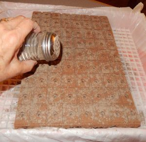 mineral rock dust sprinkle