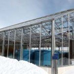 greenhouse snow