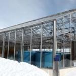 greenhouse snow