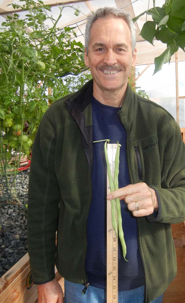 Colle Davis holding two green beans ranging from 10 inches to 12 inches in length.