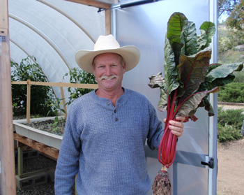 "Lane McClelland, Backyard Aquafarms, holding a single head of Swiss Chard grown in a Portable Farmsâ""¢ Aquaponics System"